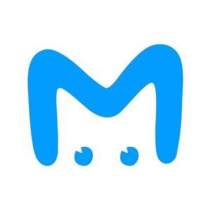 Mash на Мойке
