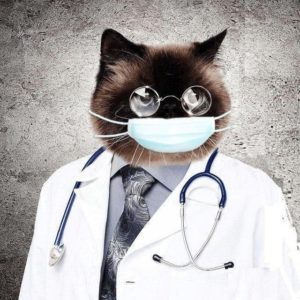 Medalbum Medical photo album Самая свежая и полезная инфа по