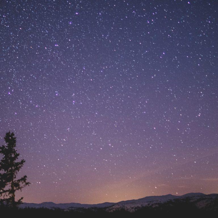 Телеграм чат — Созвездие Ночь