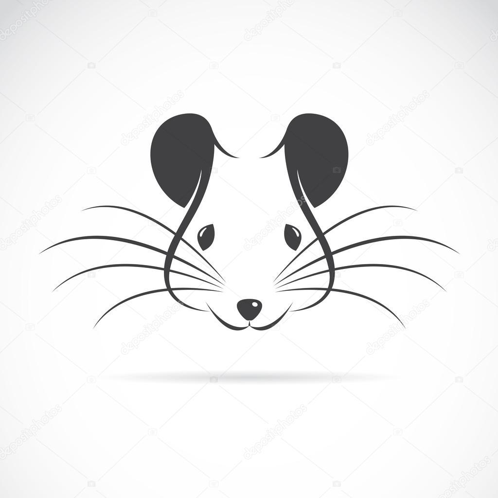 Телеграм чат — Крысиный Chat