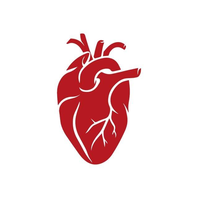 Телеграм канал — Кратко о заболеваниях | Медицина
