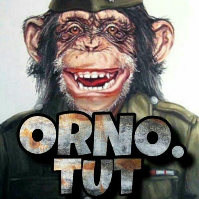 Телеграм канал — orno.tut